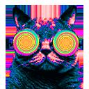 Cat wearing swirly retro sunglasses